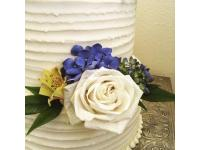 Blue Vanilla Bakery & Catering